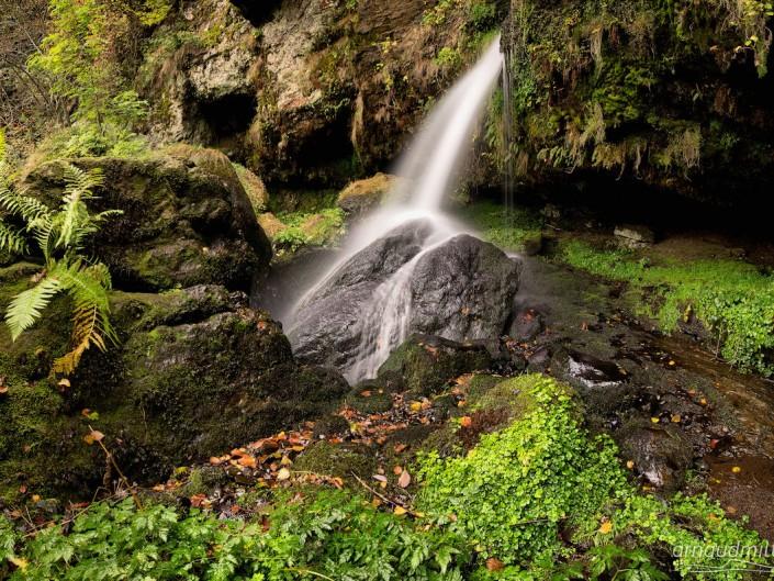 Cascade du ruisseau de l'Hère, Saint Urcize, Cantal, Octobre