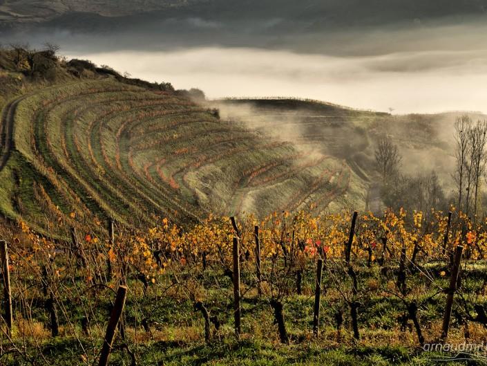 Vers le Cros, Goutrens, Aveyron, Novembre