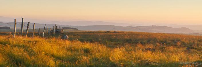 Paysage d'Aubrac près du buron du Trap Haut, Aurelle Verlac, Aveyron, Juin