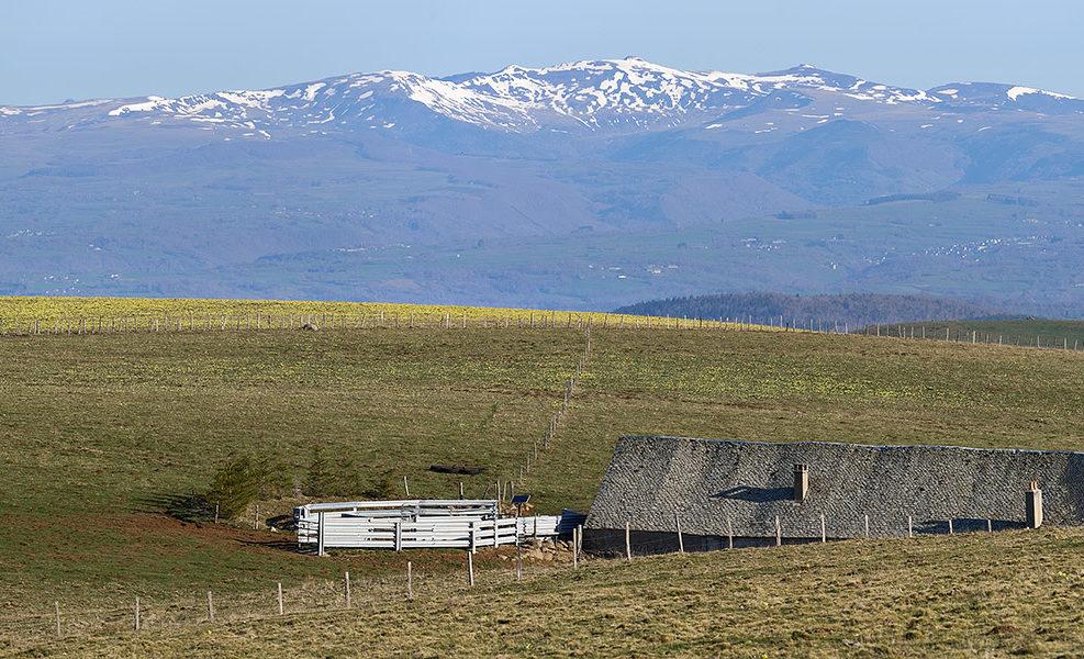 Buron de la Branque Alte, Alpuech, Aveyron, Avril