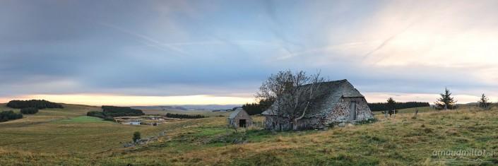 Pendouliou de Fabrègues, Prades d'Aubrac, Aveyron, Septembre
