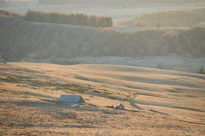Ginestouse Haut, Nasbinals, Lozère, Février