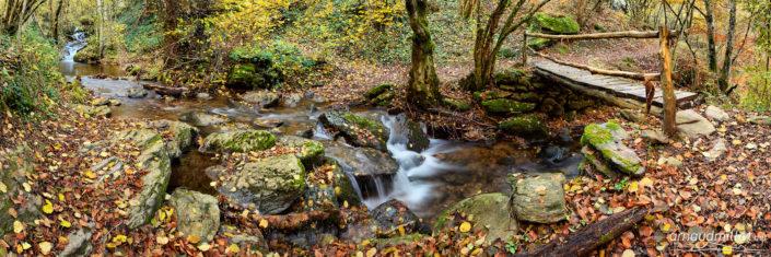 Ruisseau de Rioudis, Aurelle Verlac, Aveyron, Novembre