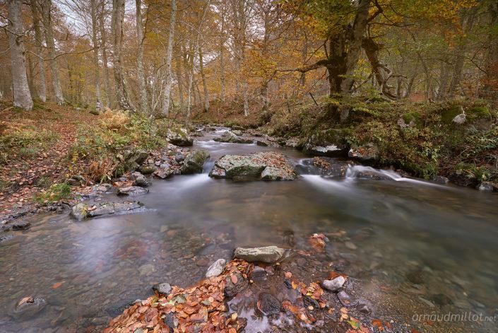 Vers Lacessat, Aurelle-Verlac, Aveyron, Novembre