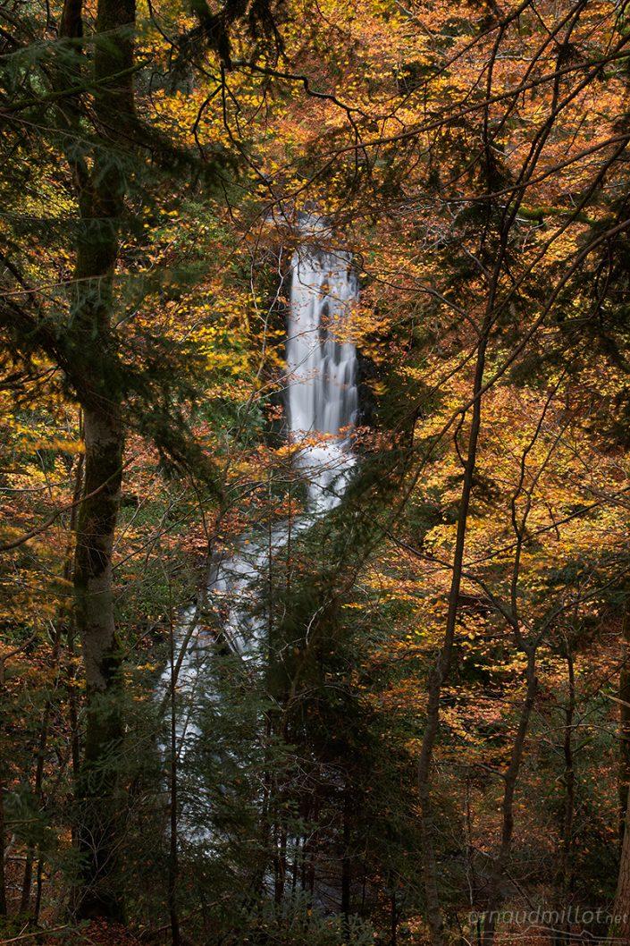 Cascade cachée en forêt, Curières, Aveyron, Octobre
