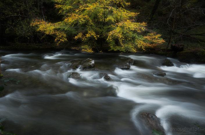 Boralde de Flaujac, Espalion, Aveyron, Novembre
