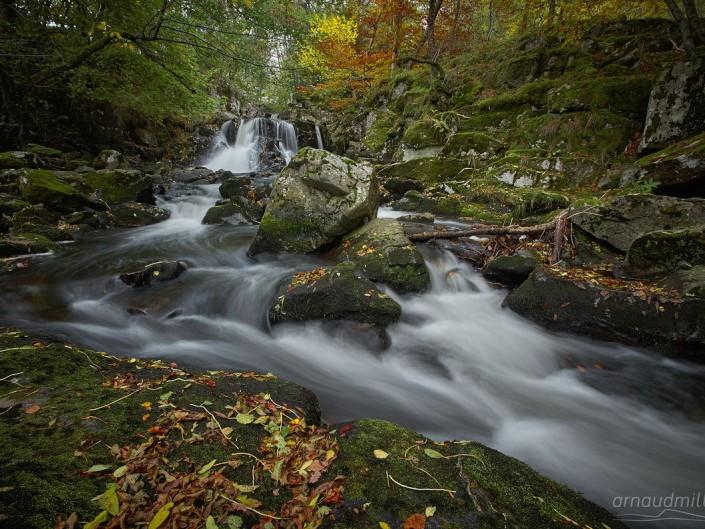 Vers les Touzes, Saint Chély d'Aubrac, Aveyron, Novembre