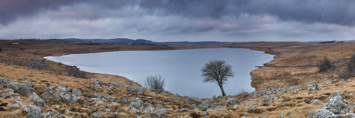 Lac de Saint Andéol et le sorbier, Marchastel, Lozère, Février