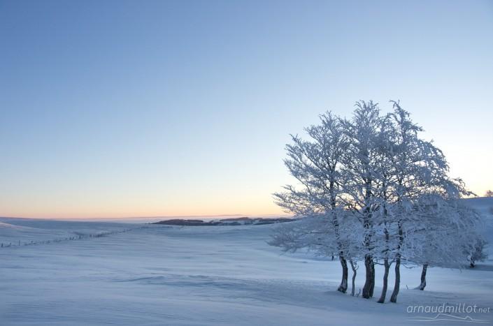 Vers le Puy de Gudette sous la neige, Saint Chély d'Aubrac, Aveyron, Décembre