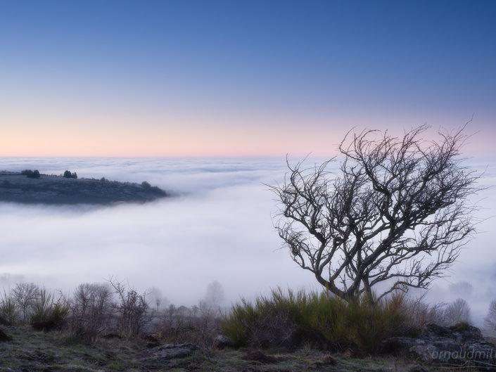 Mer de brumes, Saint Chély, Aveyron, Janvier