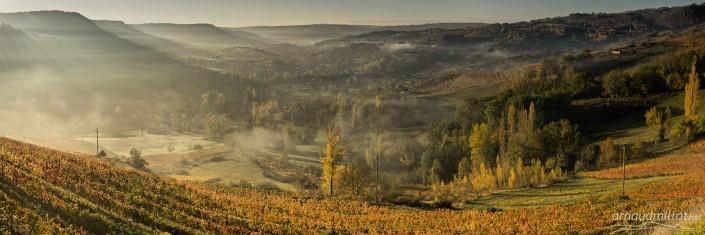 Vignes sous Cassagnes Comtaux, Bruéjouls, Aveyron, Novembre