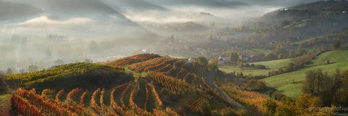 Coteaux de vignes, Clairvaux, Aveyron, Octobre