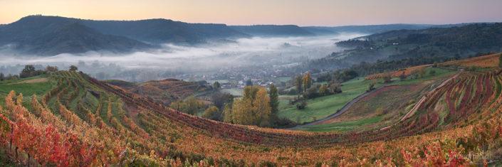 Vignes au-dessus de Clairvaux d'Aveyron, Octobre