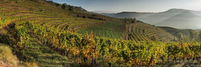 Vers les Touns, Clairvaux, Aveyron, Octobre