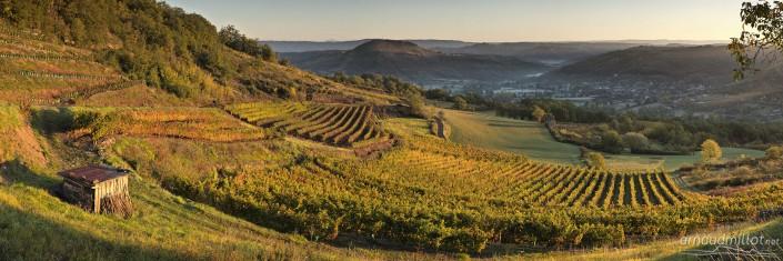 Vignes de Marcillac aux Crestes, Goutrens, Aveyron, Octobre