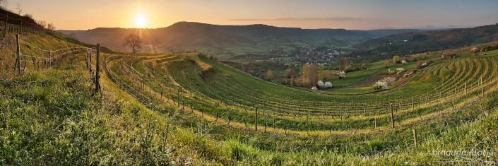 Entre le Cros et Cassagnes, Goutrens, Aveyron, Octobre