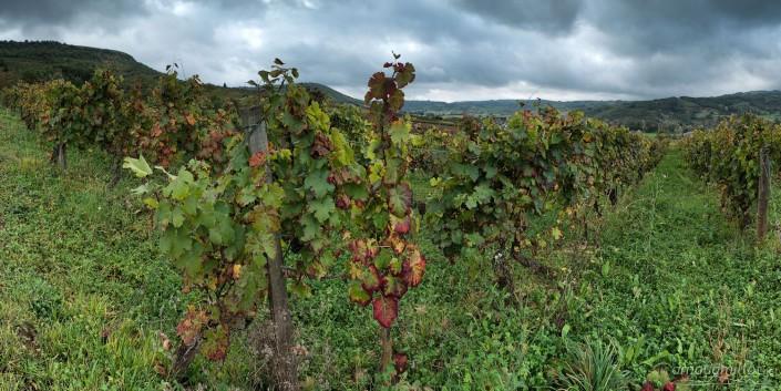 Vers Las Parras, Bruéjouls, Aveyron, Octobre