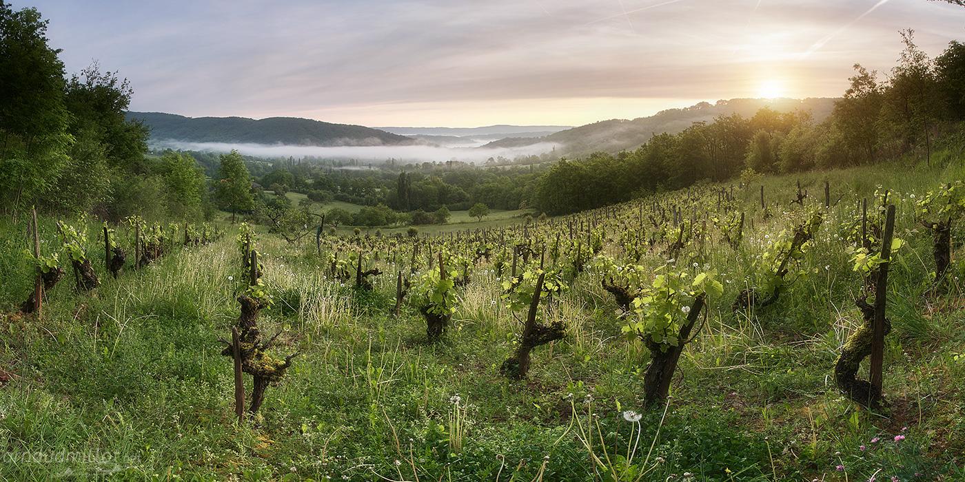 Vers Casorgnes, Goutrens, Aveyron, Mai