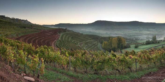 Vignes nouvelles aux Touns, Goutrens, Aveyron, Octobre