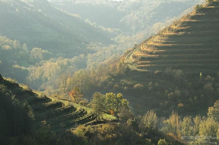 Vers la Carolie, Salles la Source, Aveyron, Novembre